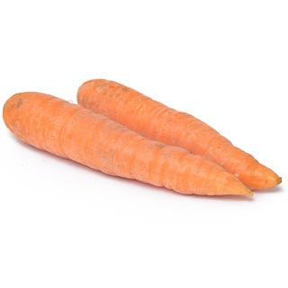 Karotten gewaschen