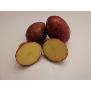Kartoffeln Laura (eher mehligkochend)