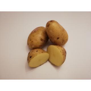 Kartoffeln Vitabella (festkochend) gewaschen