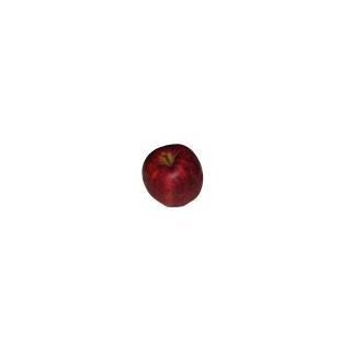 Äpfel Jonagold (süss)