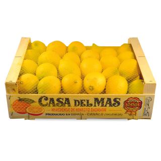 Zitronen (Kiste à 5kg)
