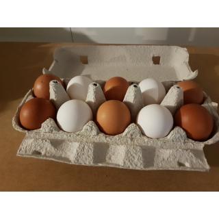10er Pack Eier ab 53g
